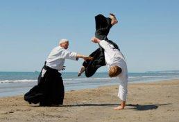 Aikido-Prinzip