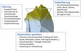 Systemisches Führungscoaching